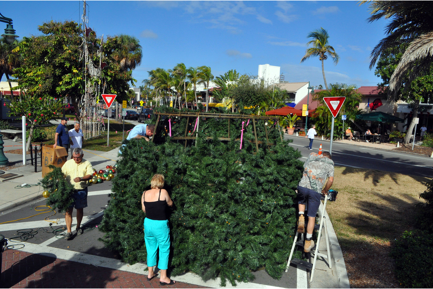 Volunteers worked together to get the branches and ornaments on the St. Armands Christmas tree, Saturday, Nov. 19, out on the circle.