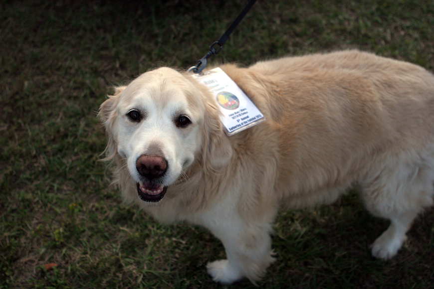 Haley had her own nametag at the 6th annual Gathering of the Faithful 2013.