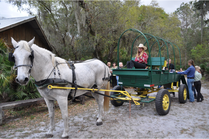Guests traveled by hayride to the museum and nature trails.