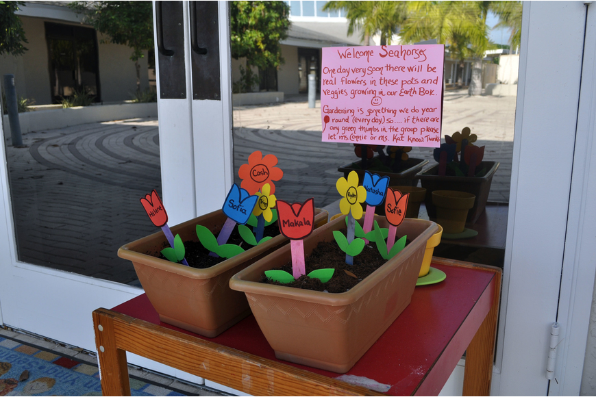 The Seahorse Class was greeted by two flowerpots full of soil and fake flowers with each student's name on a flower.