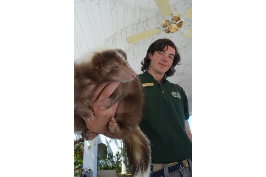 Sarasota Jungle Gardens animal keeper Mark Novak shows children a mocha skunk.