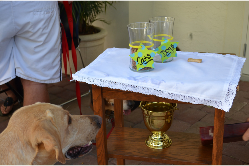 Treats for canines and felines were available for well-behaved pets.