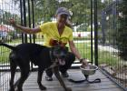 Sylvia McNichol helps feed the dogs in the cottages. Photo by Jessica Salmond